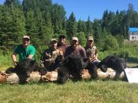 Chasse ours noir au Fer à Cheval