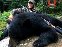 Chasse à l'ours noir