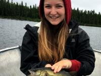 Pêche au doré