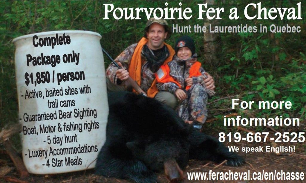 Black Bear Hunting Outfitter in the Quebec's Laurentians (Fer A Cheval)