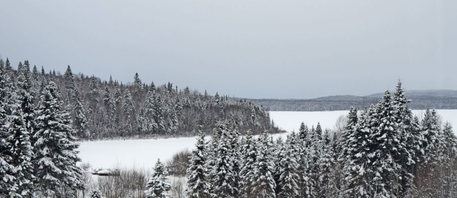 Magical snowmobile trails in the heart of the Laurentians