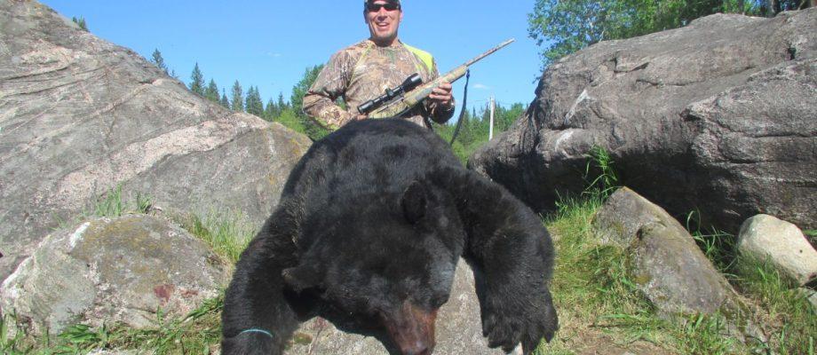 Première chasse à l'ours : un trophée de 375 lbs!
