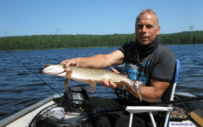 Game for a fishing trip in qu bec pourvoirie fer a for Fishing in quebec