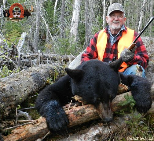 black-bear-hunting-laurentians-quebec