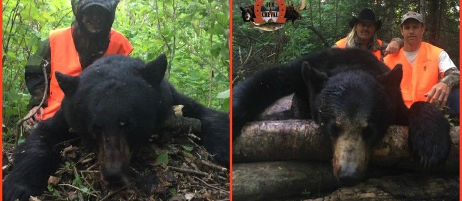 Belle récolte d'un ours par Kayla