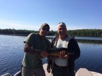 pêche doré
