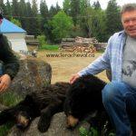 chasse-ours-noir-clients-pourvoirie-fer-a-cheval-hautes-laurentides