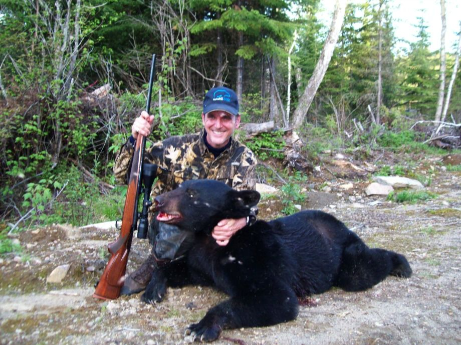 Chasse à l'ours et pêche au doré!