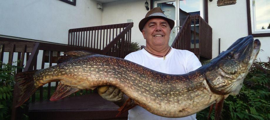 trophée de pêche au brochet au Fer à Cheval