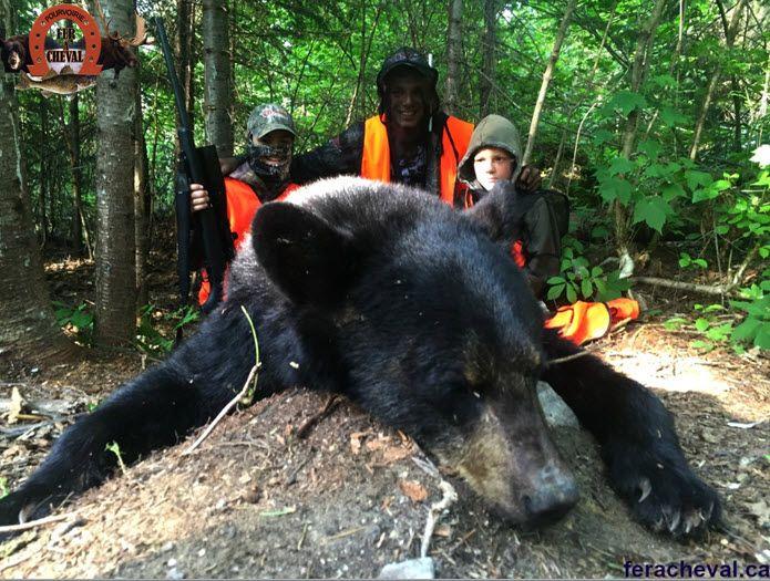 Chasse ours noir à la pourvoirie Fer à Cheval, Laurentides