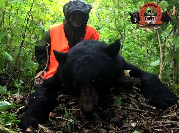 chasse ours noir pourvoirie Fer à Cheval