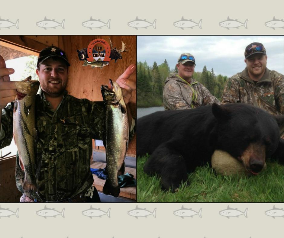 chasse à l'ours noir et pêche à la truite