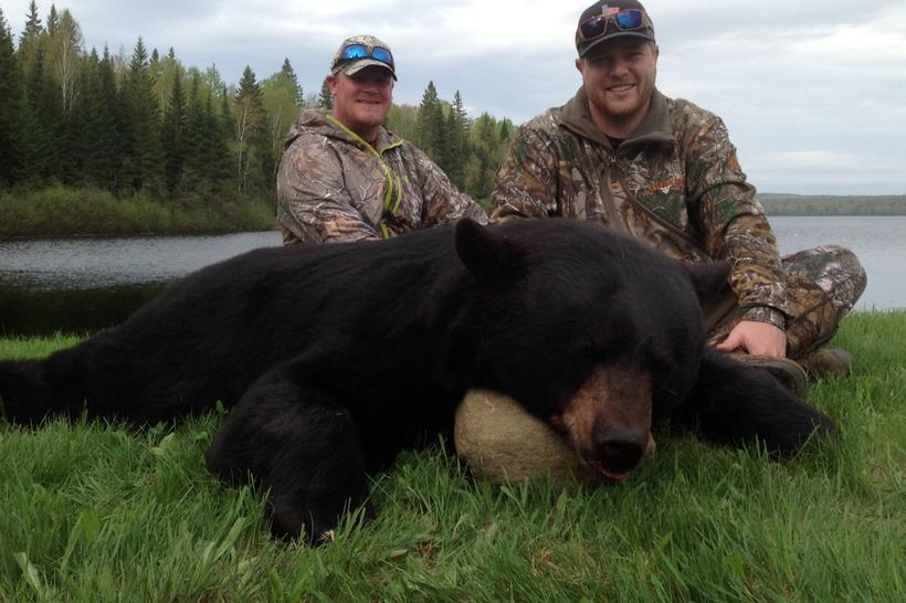 Chasse ours noir pourvoirie fer a cheval laurentides 820 3