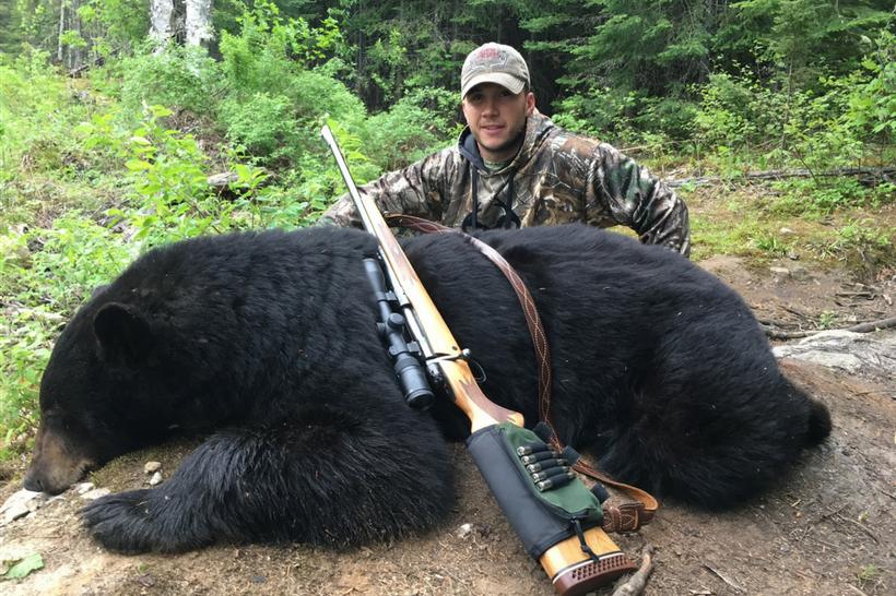 chasse ours noir pourvoirie fer a cheval laurentides 820 2