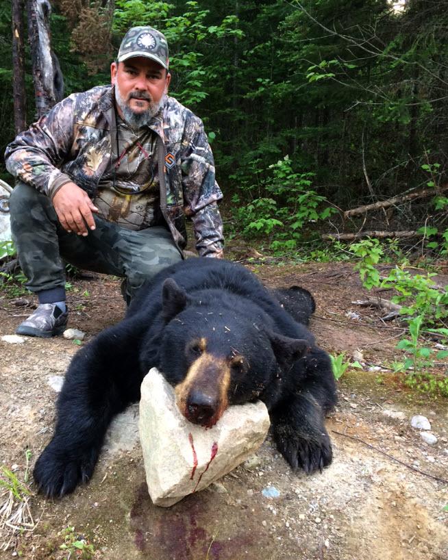 Chasse à l'ours à la pourvoirie du Fer à Cheval dans les Hautes-Laurentides du Quebec