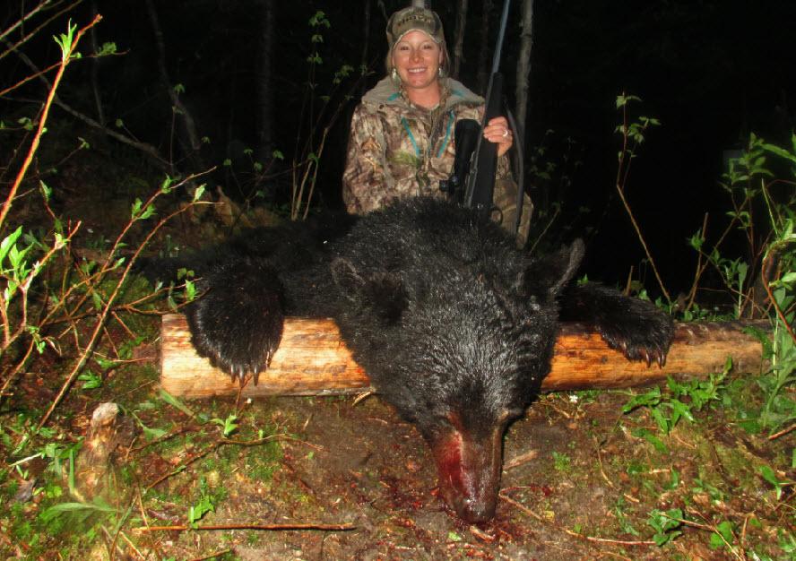 Chasse à l'ours noir Hautes Laurentides