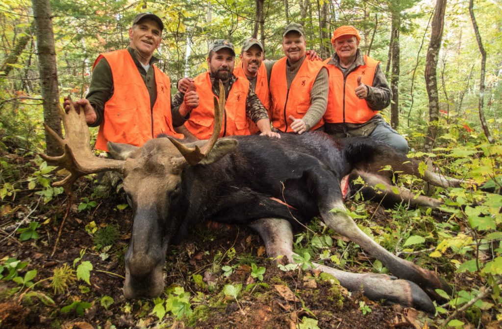 perseverance when moose hunting
